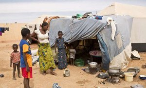 UN migration agency reports rise in displacement in northern Mali