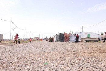 Campamento para desplazados iraquíes en las afueras de Erbil, en el norte de Iraq. Foto: UNICEF/Phazou