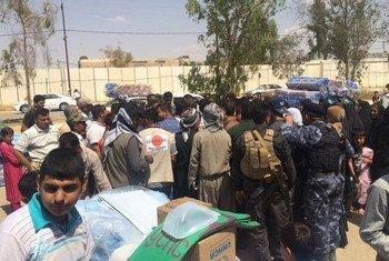 联合国难民署向伊拉克内部流离失所家庭分发救济物品。图片来源:难民署驻伊拉克办公室