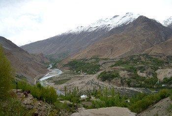 В регионе Кавказа и Центральной Азии леса занимают 30 млн гектаров.