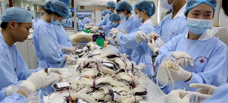 Técnicos médicos organizam e processam sangue doado no Centro de Transfusão de Sangue de Hanói, no Vietnã