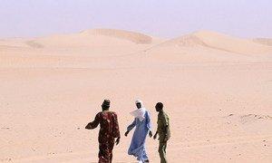 Walking through desert.