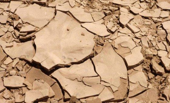 Parceria apoiada pela ONU pretende melhorar a partilha de dados para reverter a crise criada pela desertificação e degradação do solo