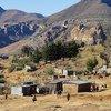 Le Lesotho fait partie des pays en développement ressentant fortement les impacts du changement climatique. Photo : FAO