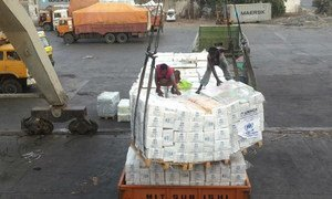 Emergency aid being offloaded from a UNHCR vessel at the Hodeidah Port, Yemen.