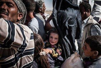 Des réfugiés syriens fuyant les combats près de la ville syrienne de Kobané attendent d'embarquer dans des bus vers la Turquie (septembre 2014). Photo : UNHCR / I. Prickett