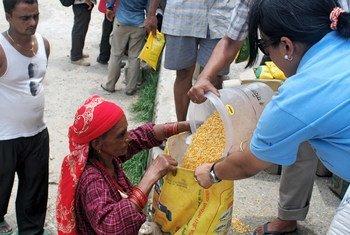 Una mujer nepalí recibe lentejas. Foto de archivo: OCHA