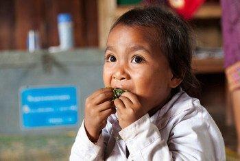 Une petite fille au Laos bénéficiant d'un programme de nutrition à l'école.