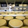 L'Indice FAO des prix des produits laitiers a baissé de 2,9% depuis juin, marquant ainsi sa seconde baisse consécutive en l'espace de deux mois.