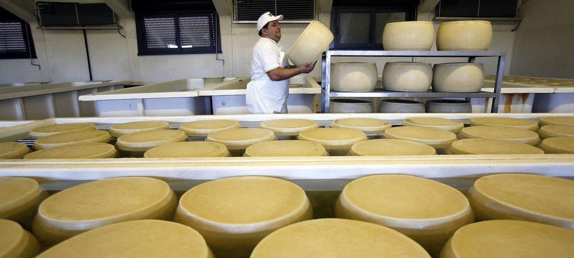 Derivados do leite também fazem parte do índice da FAO