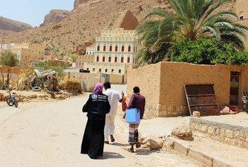 Des équipes de vaccination poursuivent les efforts déployés dans le cadre de la campagne nationale de vaccination contre la polio, la rougeole et la rubéole au Yémen, afin de s'assurer que tous les enfants soient vaccinés. Photo : l'OMS au Yémen
