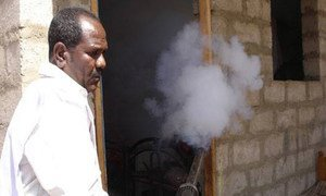The World Health Organization (WHO) has supported campaigns of indoor and outdoor spraying against dengue vectors in Yemen.