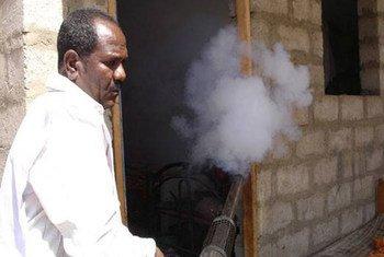 L'Organisation mondiale de la Santé (OMS) a soutenu des campagnes de pulvérisation intérieure et extérieure pour se prémunir de la dengue au Yémen. Photo : l'OMS au Yémen