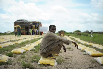 A man rests on a bag of rice distributed by Qatar Charity for iternally displaced people (IDPs) affected by flooding and clan conflict in Jowhar, Somalia. November (2013)