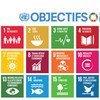 Les 17 objectifs de développement durable (ODD)Source: ONu en collaboration avec 'Project Everyone'