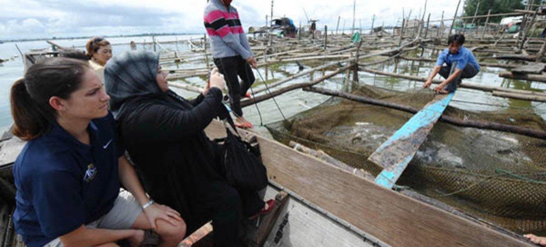 De acordo com a FAO, todas as fases da cadeia de abastecimento da pesca e da aquicultura podem ser interrompidas ou limitadas por estas restrições