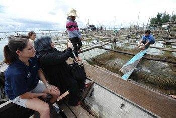 A travers la coopération Sud-Sud, des agriculteurs reçoivent une formation concernant la pisciculture. Photo FAO/Hoang Dinh Nam
