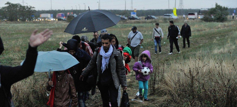 Refugiados sirios cruzan un descampado entre Hungría y Austria. Foto: ACNUR/Mark Henley