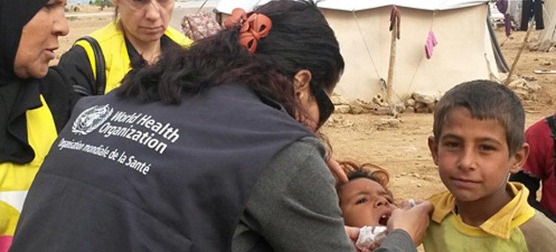 Desde que estalló el conflicto en Siria hace 4 años, la OMS ha asumido un papel de liderazgo en la atención a los desplazados. Foto: OMS