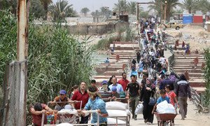 Families fleeing violence in Ramadi, Anbar province, walk across Bzebiz Bridge into Baghdad province in Iraq.