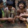 Niños en India  Foto:OMS/Tom Pietrasik
