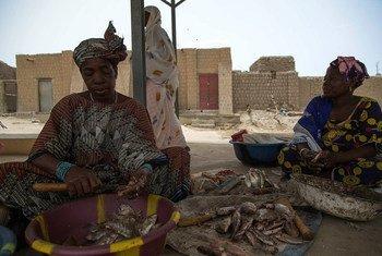 Женщины  в Мали на рынке  в районе  патрулирования  миротворцев ООН