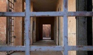 В ООН  встревожены сообщениями о том, что иранско-шведский ученый Ахмадреза Джалали переведен в одиночную камеру для подготовки его к казни
