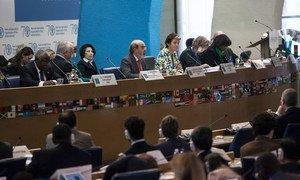 FAO Director-General Jos Graziano da Silva addresses the Committee on World Food Security.