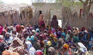 Des femmes tchadiennes déplacées, qui ont fui devant les menaces de Boko Haram, vivent dans des familles d'accueil à Baga-Sola. Photo : OCHA/Mayanne Munan