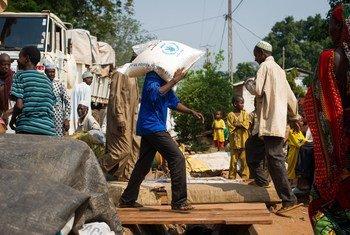 Un homme transportant de la nourriture du Programme alimentaire mondial (PAM) à Bangui, en République centrafricaine (archive)