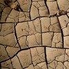 Según cálculos de la OMM, el año 2020 sería uno de los más calurosos desde que comenzaron los registros.