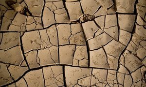 Dry earth in the desert plains of the Danakil depression in northern Ethiopia.