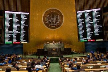 联大现场。联合国图片/Cia Pak