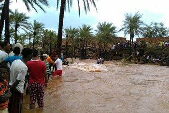 من الأرشيف: هطول أمطار غزيرة في عام 2015 على جزيرة سقطرى جراء إعصار تشابالا.