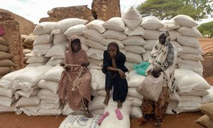 A group of women sit on sacks of rice and maize in Wajir, Kenya.