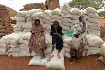 Группа   женщин в Кении. Фото   ФАО/   Ами Виталь