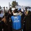 难民署工作人员为抵达希腊群岛的叙利亚难民提供帮助。难民署图片/Achilleas Zavallis