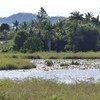 El lago Ba, en Fiji, se evaporó durante la sequía provocada por el episodio de El Niño en 1997-98. Foto de archivo: OCHA/Danielle Parry