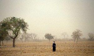 Walking through fields in Mali.