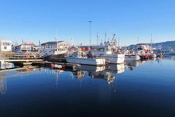 Des bateaux dans le port de Reykjavik, en Islande. Photo: <a href=http://bit.ly/1HZzBeE>UNEP GRID Arendal/Peter Prokosch </a>