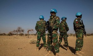Des Casques bleus de la Mission multidimensionnelle intégrée des Nations Unies pour la stabilisation au Mali (MINUSMA). Photo MINUSMA/Marco Dormino