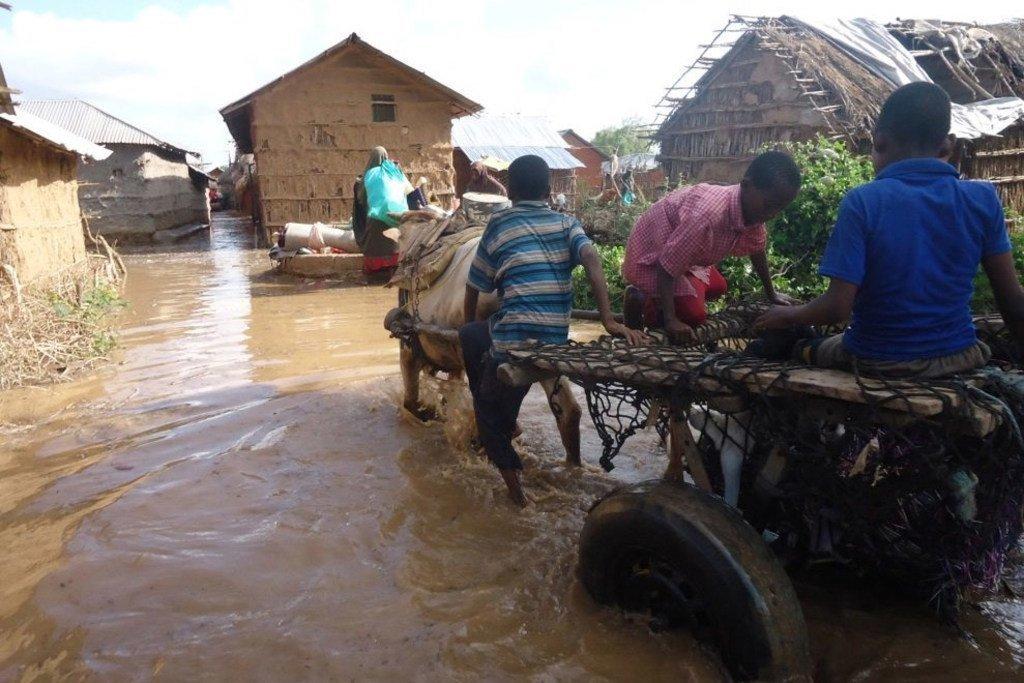 在索马里,由于谢贝利河和朱巴河的水位上涨,洪水一直影响着低洼地区的人们。