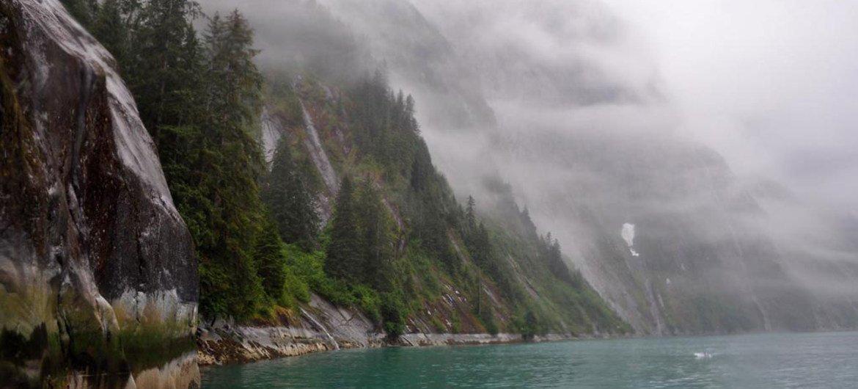 Boreal forests line a misty fjord in southeast Alaska (file). FAO/Bill Ciesla