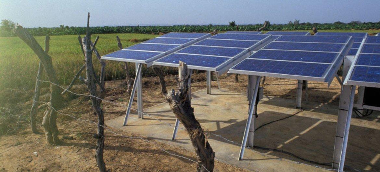 Las energías renovables son un valor fundamental en la lucha contra el hambre y el cambio climático.