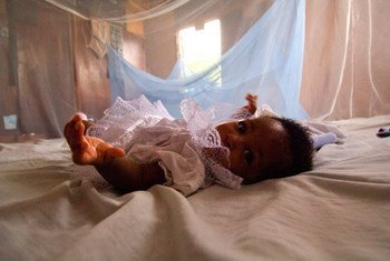Infant surrounded by malaria bed net, Ghana.