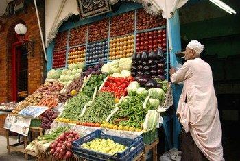 Verduras frescas en venta en un mercado callejero en Giza, Egipto. Foto: FAO/Ami Vitale