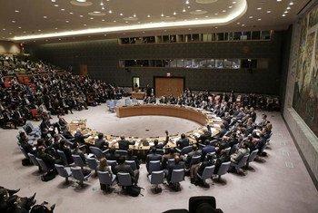 Le Conseil de sécurité tient le première réunion de son histoire au niveau des ministres des Finances. Photo ONU/Evan Schneider