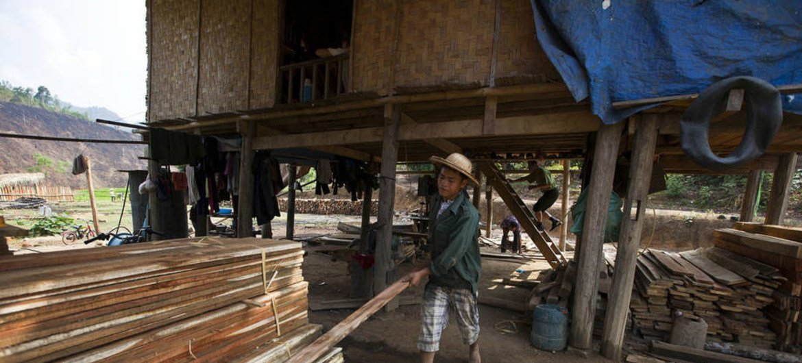 Villagers milling lumber for eventual manufacture of wood products such as furniture and even homes, for the local market, Back Kan, Viet Nam.