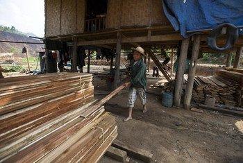 Des villageois scient du bois pour la fabrication de produits en bois tels que des meubles et même des maisons, pour le marché local, à Back Kan, au Viet Nam.