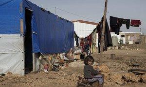 Agências da ONU dizem que as comunidades de acolhimento dos refugiados sírios enfrentam desafios socioeconômicos profundos.